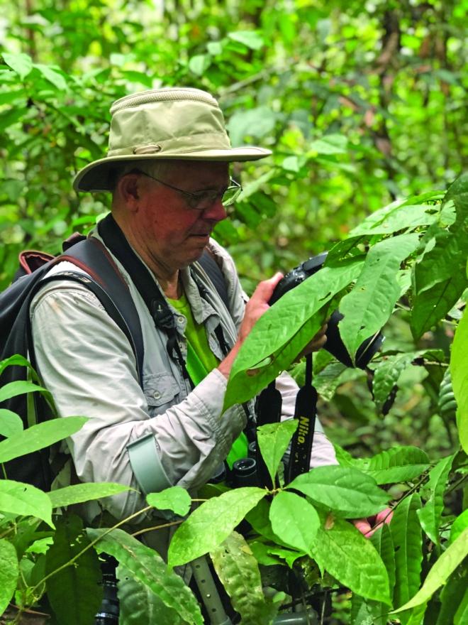 9.1. Experto británico en actividad de reconocimiento de especies en el Amazonas - Por Natalia Molina